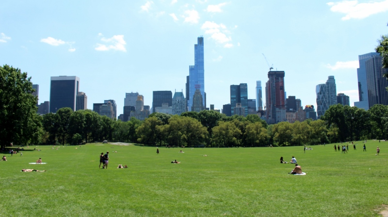 Gray-Line-New-York-Central-Park-Sheep-Meadow-1_800x449.jpg