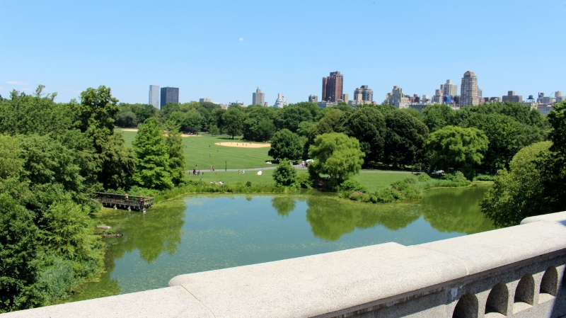 Gray-Line-New-York-Central-Park-Belvedere-Castle-View-2_800x449.jpg